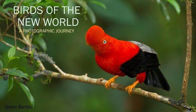 Birds of the New World